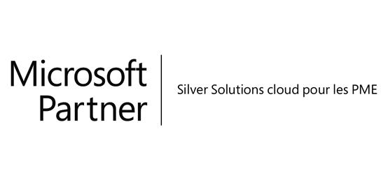 microsoft_partner